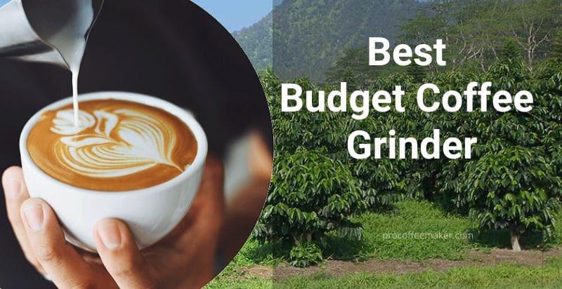 8 Best Budget Coffee Grinder 2020