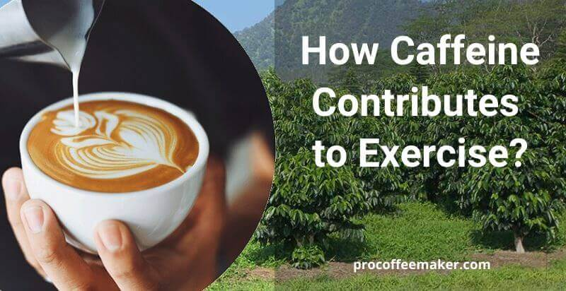 How Caffeine Contributes to Exercise