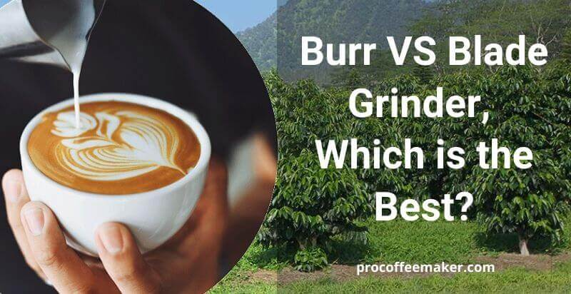 Burr VS Blade Grinder, Which is the Best